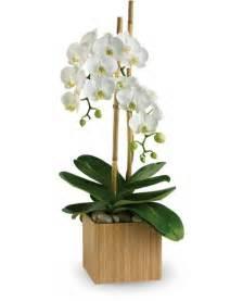 floral blog with fun tips ideas teleflora