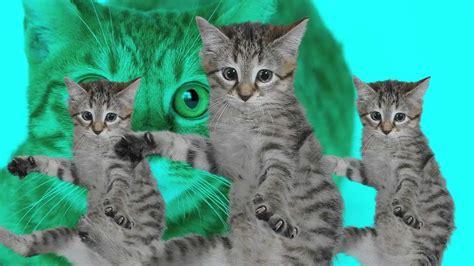 best kittycat song official feat grumpy cat