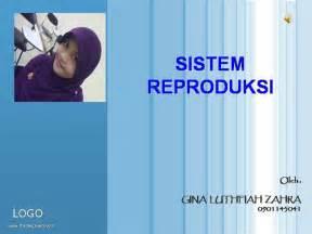 At Aglance Sistem Reproduksi sistem reproduksi authorstream