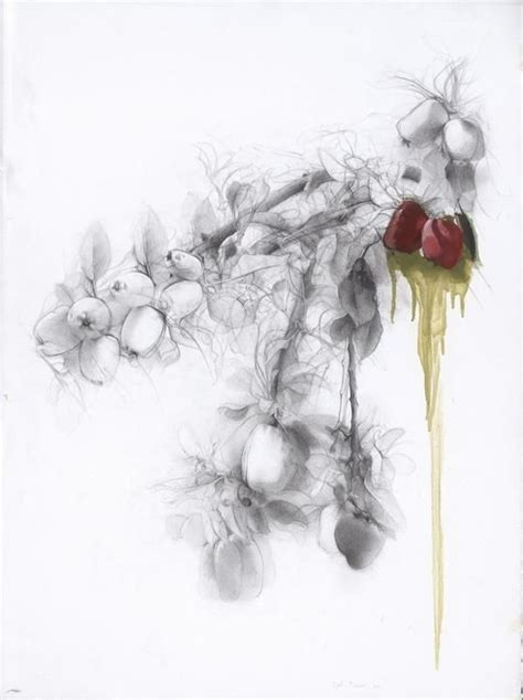 P Sigal Sketches by 122 Best Images About Flowers Drawings Of Orchids On