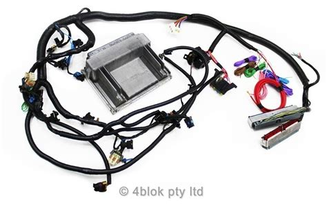 holden hq wb 5 7 ls1 3 wiring loom ecu conversion