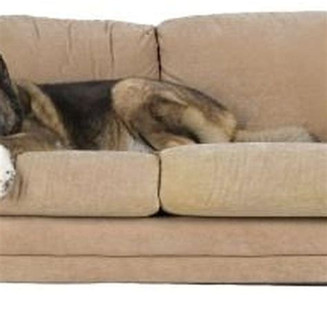 how to remove pet odor from microfiber couch how to get permanent marker off of a microfiber couch
