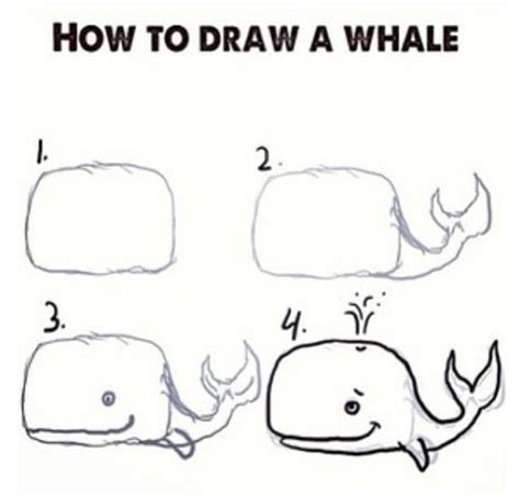how do you draw a diagram how to draw a whale stuff ideas