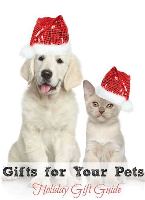 Haute Gift Guide Presents For Your Pet by Gifts For Your Pets Gift Guide The Mount