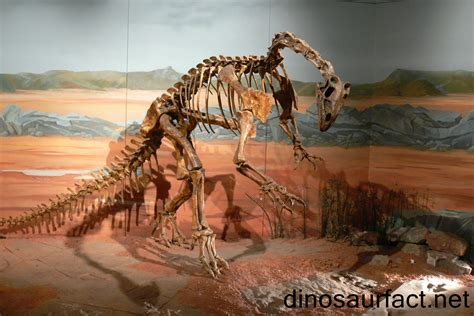 thecodontosaurus dinosaur