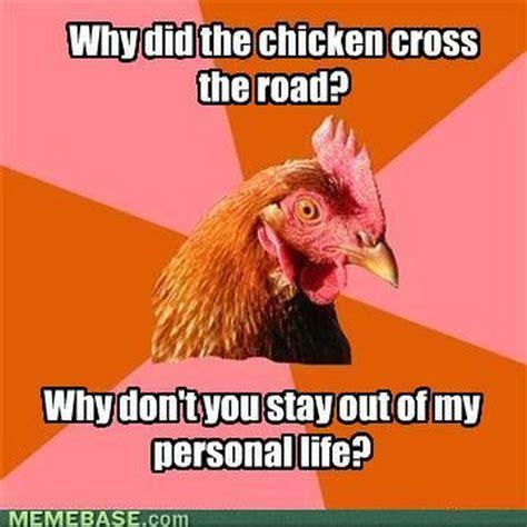Chicken Meme - anti joke chicken meme 20 pics