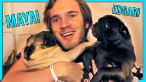 Edgar and maya lick pewdiepie s face short cute amp funny youtube