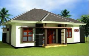 designs for homes tropical home with pyramid roof design tiny house design