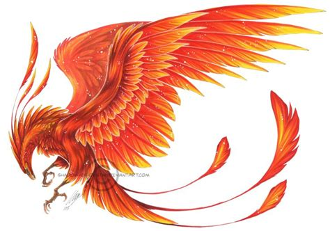 Phoenix Tattoo Representation | deviantart more collections like phoenix on arm by