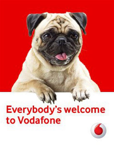vodafone pug the vodafone pug gets cuter by the day missmalini