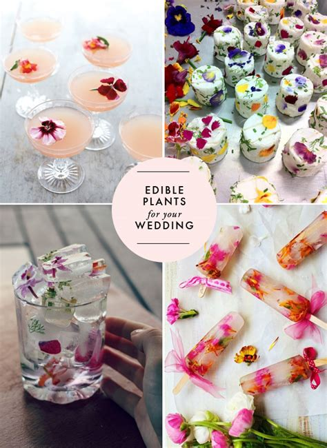 diy flower food edible flowers for your wedding brooklyn bride modern