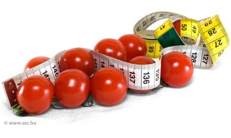 alimenti senza calorie alimenti zero calorie dago fotogallery