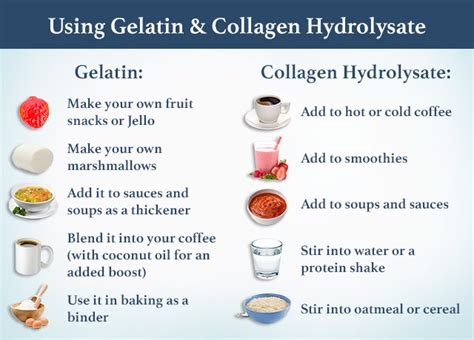 Collagen vs Gelatin: What's the Difference?   Swanson