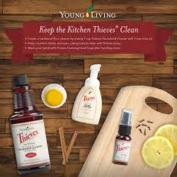 What Can I Use To Clean My Kitchen Cabinets Thieves Cleaner