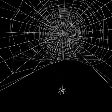 spider web background background spider web vector illustration