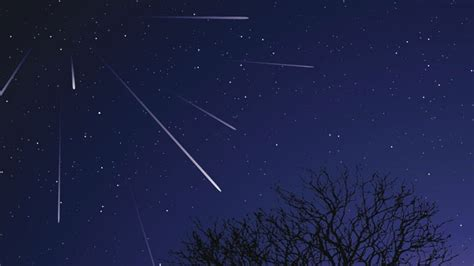 Leonid Meteor Shower by Leonid Meteor Shower Peaks On November 17th And 18th