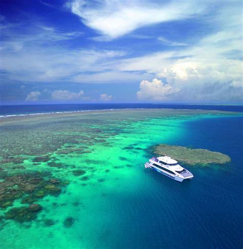 boat trip queensland port douglas snorkel dive tour great barrier reef tours