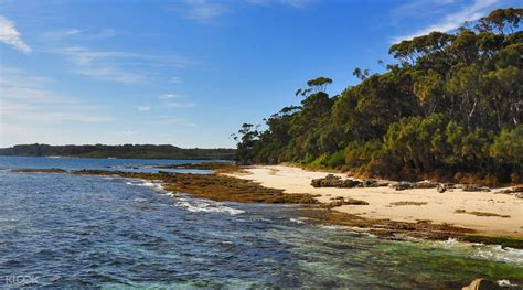 boat tour jervis bay jervis bay south coast cruise klook