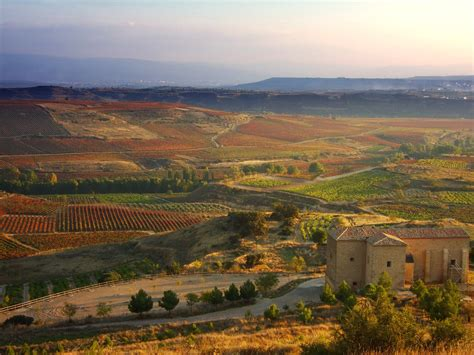 best rioja wines the best wines rioja and more wine from