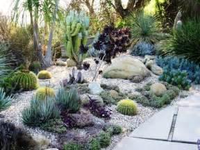 home and garden succulent garden