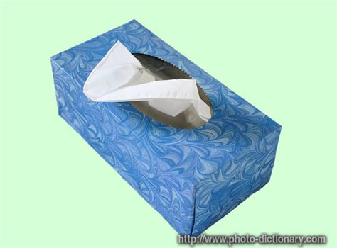 Tisu Box tissue box photo picture definition at photo dictionary