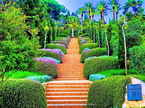 In The Garden And More Images Of Beautiful Gardens Beautiful Design Most