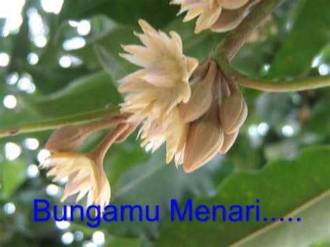 Mukena Bunga Tanjung 5 bunga tanjung