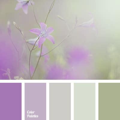 thistle color colour of thistle flowers color palette ideas