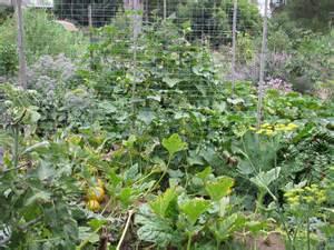 finch frolic gardens permaculture organic gardening