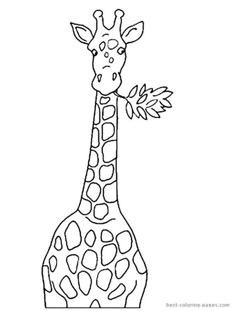 giraffe head coloring pages giraffe head coloring pages giraffes coloring pages