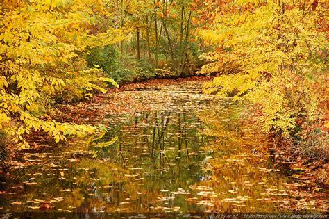 photo of photos d automne republi 233 es