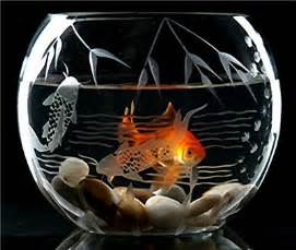 Fish Bowls on Pinterest   Fish, Aquarium and Bowls