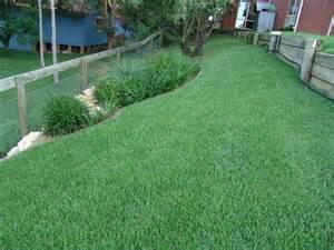 empire zoysia atlanta georgia landscaping company