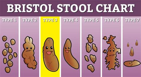 What Does Really Stool by What Your Poo Says About You Phl17