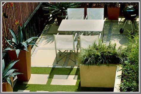 Plastik Untuk Atap Tanaman jenis tanaman yang cocok ditanam di atap rumah