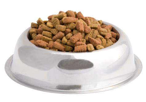 pet food all commercial foods are the same according to the acvn pet radio magazine