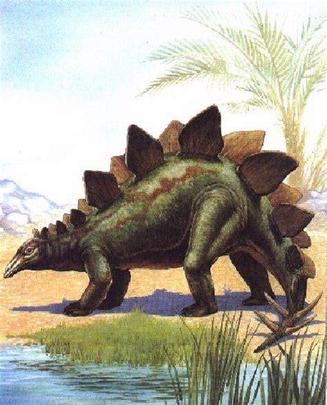 foto film dinosaurus image dinosaurus stegosaurus besidesw jpg dinosaur wiki