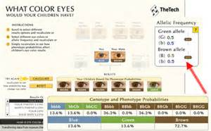 eye color genetics chart sandwalk the genetics of eye color models picture