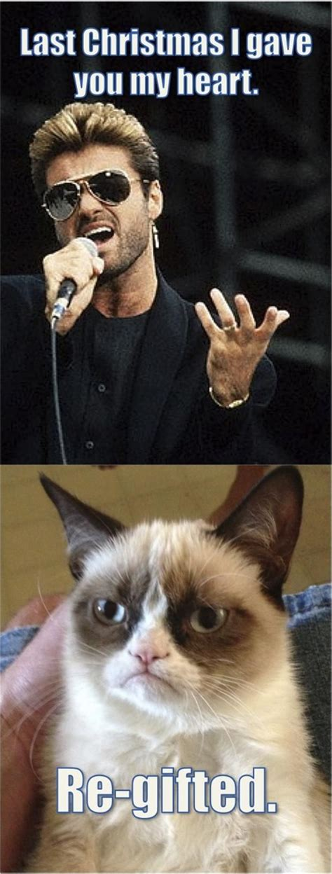 cat song grumpy cat quotes quotes