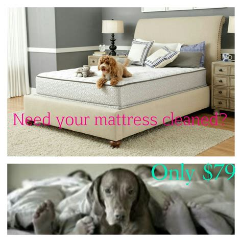 can smoke in carpet make you sick mattress cleaning west palm fl 561 257 6999