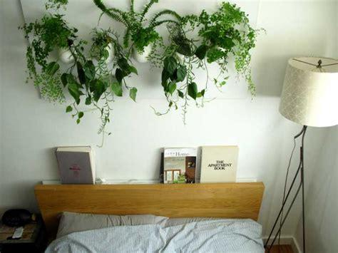 piante in da letto perch 233 tenere delle piante in da letto la