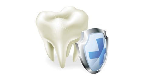 in house dental insurance plans best florida dental insurance plans florida discount dental plans html autos weblog