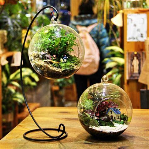 ball shape hanging glass vase succulent plants micro