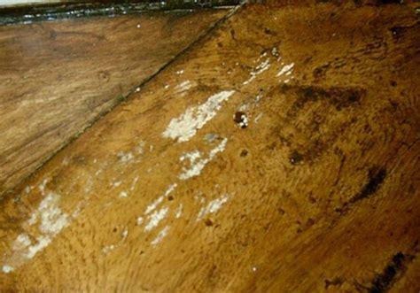 Lemari Obat Kayu jual obat anti jamur kayu di jepara dan sekitarnya