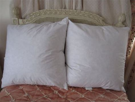 Sham Pillow Inserts by Feather And Pillow Sham Inserts Vs Poly Filled