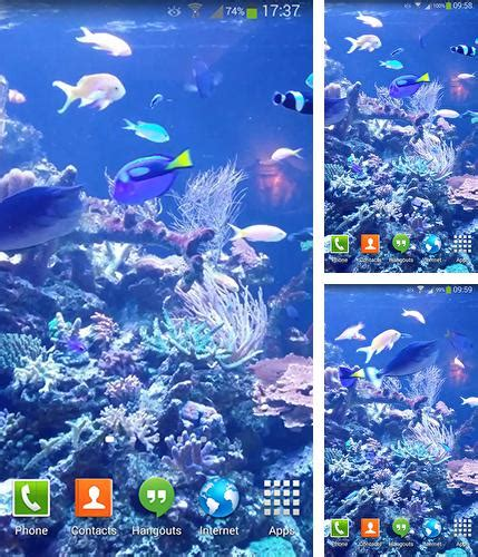 aquarium live wallpaper hd for android youtube android aquariums live wallpapers free download