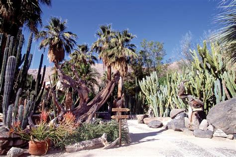 palm springs botanical garden weekend trip in palm springs palm springs vacation ideas and guides travelchannel
