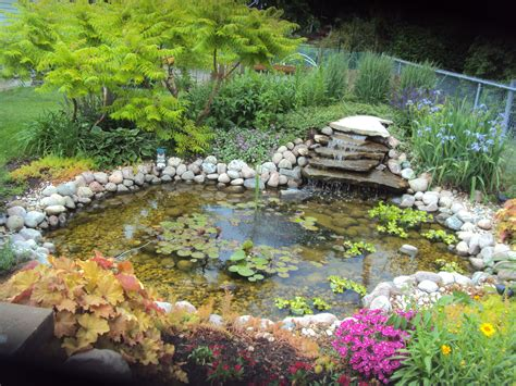 backyard water garden backyard water gardens large and beautiful photos photo