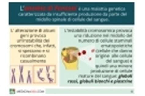 piastrine basse alimentazione globuli bianchi bassi