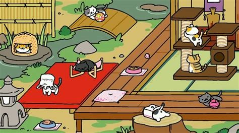 zen layout neko atsume 171 neko atsume 187 un adorable jeu mobile 224 base de chats